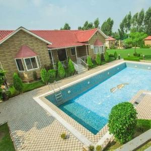 9072 Sq.ft Residential Plot for Sale in Nagli Sabapur, Noida