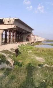 900 Sq.ft Residential Plot for Sale in Govindpuri, New Delhi