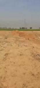 540 Sq.ft Residential Plot for Sale in Sultanpur, Gurgaon