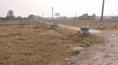 Gallery Cover Image of  Sq.ft Residential Plot for buy in Natunpara for 700000