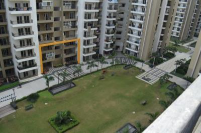 Gallery Cover Image of 1695 Sq.ft 3 BHK Apartment for buy in Gulshan Ikebana, Sector 143 for 9800000