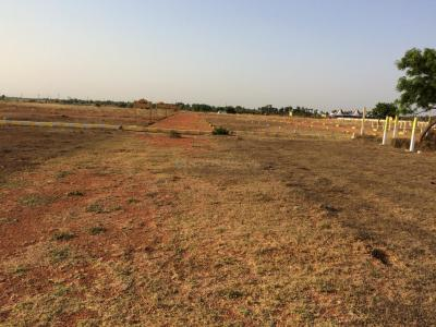 Gallery Cover Image of 1920 Sq.ft Residential Plot for buy in Thirunindravur for 672000