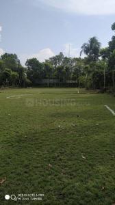 2160 Sq.ft Residential Plot for Sale in Rajarhat, Kolkata