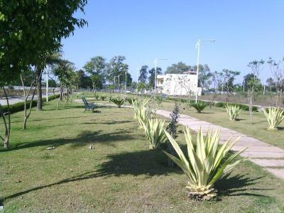 3100 Sq.ft Residential Plot for Sale in Talawali Chanda, Indore