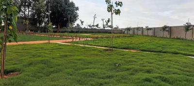 Gallery Cover Image of  Sq.ft Residential Plot for buy in Devanahalli for 3720000