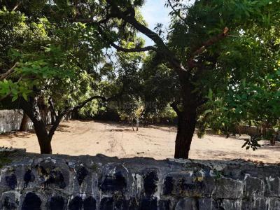 15200 Sq.ft Residential Plot for Sale in  Mahabalipuram, Chennai