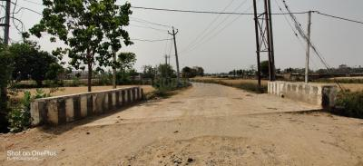 1200 Sq.ft Residential Plot for Sale in Khagaul, Patna