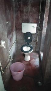 Bathroom Image of PG 4271665 Bhowanipore in Bhowanipore