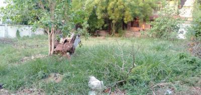 630 Sq.ft Residential Plot for Sale in Navrangpura, Ahmedabad
