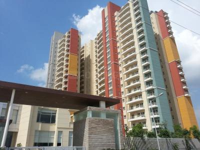 Gallery Cover Image of 1853 Sq.ft 3 BHK Apartment for rent in BPTP The Resort, Sector 75 for 15000