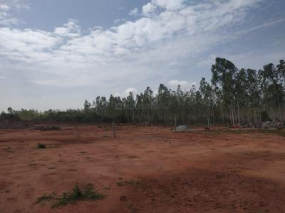 Gallery Cover Image of  Sq.ft Residential Plot for buy in Gandi Maisamma for 2800000