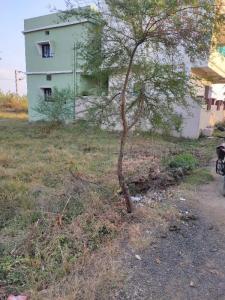 1600 Sq.ft Residential Plot for Sale in Brahmapuri, Chandrapur