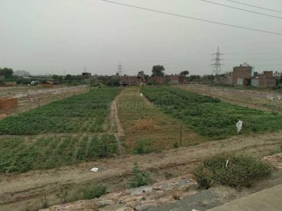 900 Sq.ft Residential Plot for Sale in Sector 44, Noida