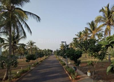 1200 Sq.ft Residential Plot for Sale in Lalith Mahal Quatras, Mysore