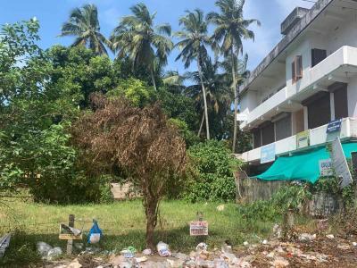 5662 Sq.ft Residential Plot for Sale in Nellikunnu, Thrissur