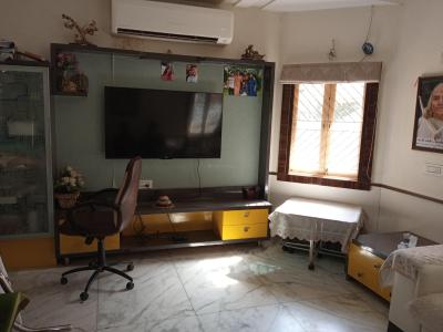 Gallery Cover Image of 5900 Sq.ft 5 BHK Villa for buy in Jodhpur for 52500000
