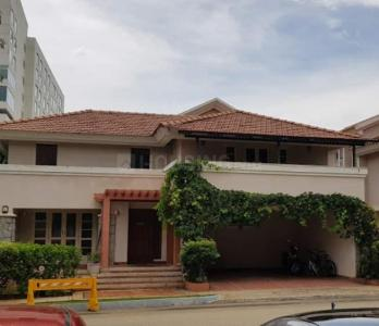 Gallery Cover Image of 2200 Sq.ft 3 BHK Villa for rent in Prestige Ozone, Whitefield for 75000