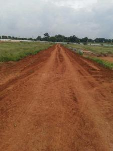 Gallery Cover Image of  Sq.ft Residential Plot for buy in Shamirpet for 2200000