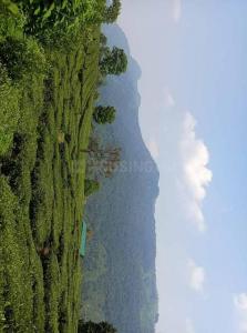 9156 Sq.ft Residential Plot for Sale in Nondimedu, Nilgiris