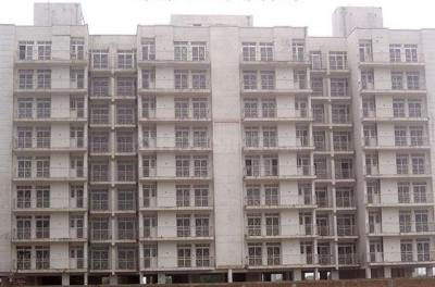 Gallery Cover Image of 1380 Sq.ft 3 BHK Apartment for rent in Sector 77 for 7000
