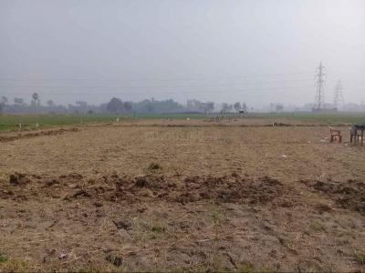 1361 Sq.ft Residential Plot for Sale in Lodipur, Patna