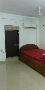 Gallery Cover Image of 1000 Sq.ft 2 BHK Apartment for rent in New Alipore for 19000