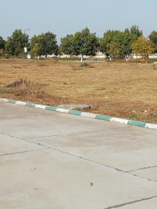 5425 Sq.ft Residential Plot for Sale in Talawali Chanda, Indore