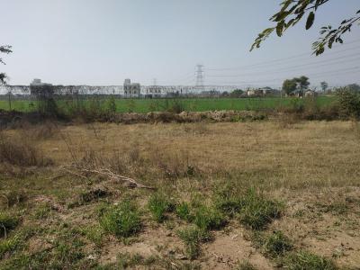289 Sq.ft Residential Plot for Sale in Jagdishpur, Sonepat