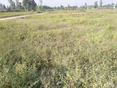 1800 Sq.ft Residential Plot for Sale in Railway Colony, Saharanpur