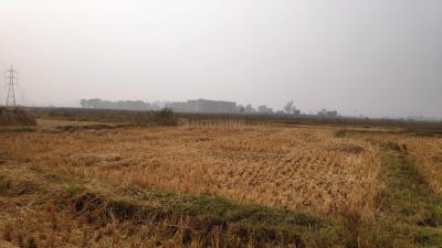 2400 Sq.ft Residential Plot for Sale in Kaliganj, Durgapur