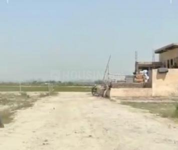 1080 Sq.ft Residential Plot for Sale in Tikawali, Faridabad