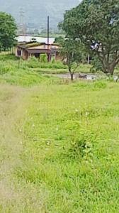 87120 Sq.ft Residential Plot for Sale in Karjat, Thane
