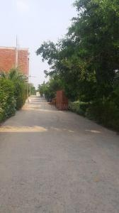 700 Sq.ft Residential Plot for Sale in Noida Extension, Greater Noida