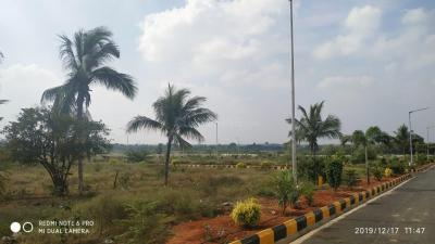 1548 Sq.ft Residential Plot for Sale in Shamirpet, Hyderabad