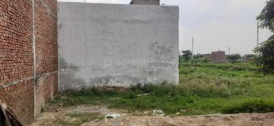 Gallery Cover Image of  Sq.ft Residential Plot for buy in Sewla Jatt for 455000