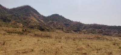 43560 Sq.ft Residential Plot for Sale in Tadgaon, Raigad