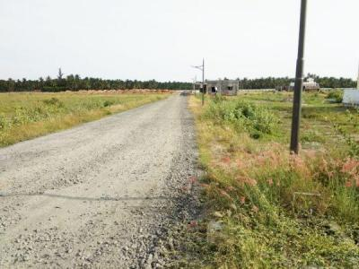 Gallery Cover Image of  Sq.ft Residential Plot for buy in Kalapatti for 3130000