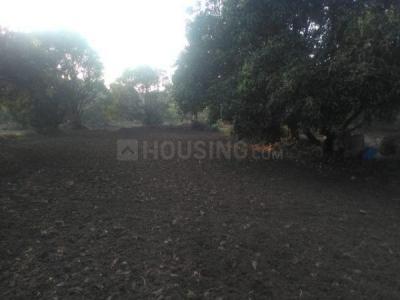 4804 Sq.ft Residential Plot for Sale in Gorai, Mumbai