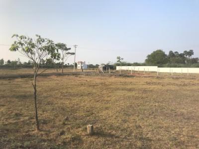 Gallery Cover Image of  Sq.ft Residential Plot for buy in Kattankulathur for 1322500