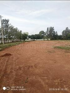 Gallery Cover Image of  Sq.ft Residential Plot for buy in Moranapalli for 1500000