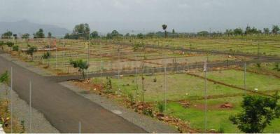 115 Sq.ft Residential Plot for Sale in Sector 33, Gurgaon