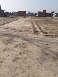 270 Sq.ft Residential Plot for Sale in Pilkhuwa, Ghaziabad