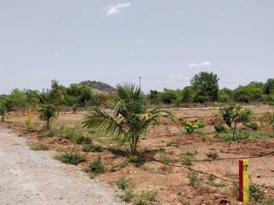 5400 Sq.ft Residential Plot for Sale in Hanamkonda, Warangal