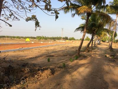 Gallery Cover Image of  Sq.ft Residential Plot for buy in Redhills for 385000