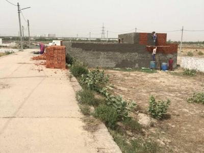 900 Sq.ft Residential Plot for Sale in Sector 135, Noida