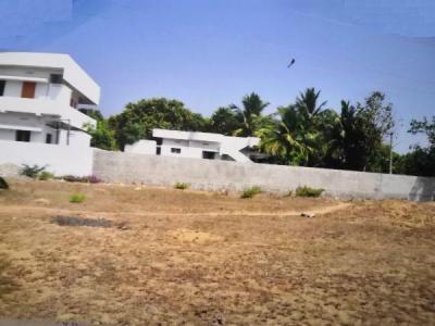 2016 Sq.ft Residential Plot for Sale in Rayudupalem, Kakinada