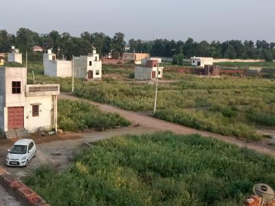 66 Sq.ft Residential Plot for Sale in Sector 69, Gurgaon