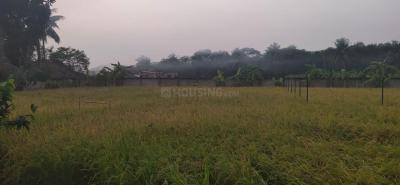 9060 Sq.ft Residential Plot for Sale in Barasat, Kolkata