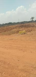 2400 Sq.ft Residential Plot for Sale in Buranpur, Nellore