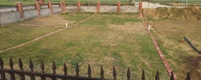 125 Sq.ft Residential Plot for Sale in Rajoria Nagar, Gurgaon